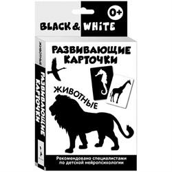 """Развивающие карточки """"Black & White. Животные"""", 32шт. - фото 5609"""